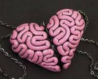 Café-psycho : Le cerveau est-il notre principal organe sexuel ?